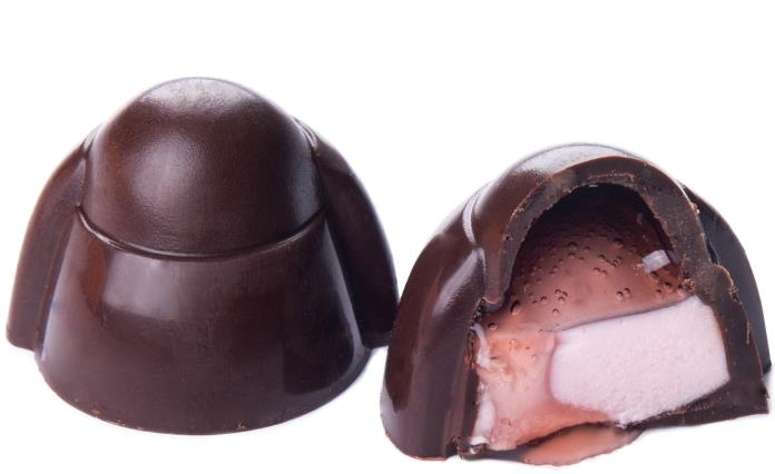 MARIE-HENRIETTE DARK CHOCOLATE, MOUSSE WITH CRANBERRIES BY GENAUVA CHOCOLATES